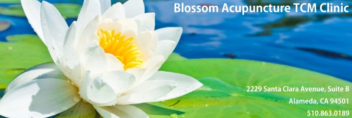 Blossom Acupuncture